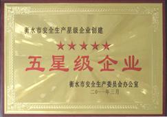 燕赵蓝天-五星级企业