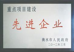 燕赵蓝天板业-先进企业