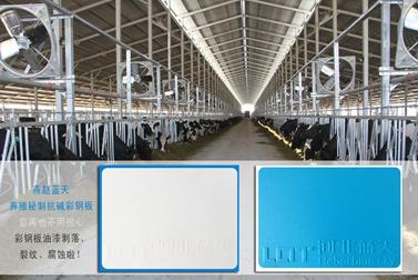 养殖秘制抗碱彩钢板,让您的养殖厂房历久长新,健康环保。